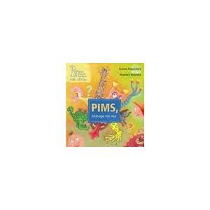 PIMS, którego nie ma.